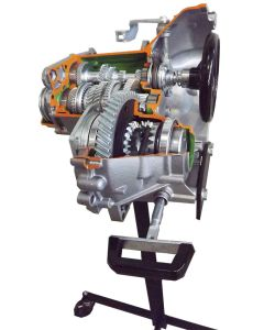 Transaxle Cut-Away, 5 Speed + Reverse, with Differential